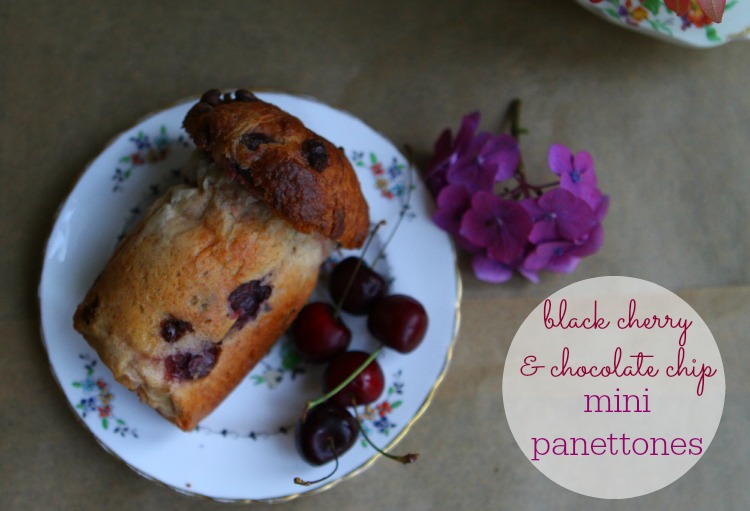 cherry panettone2 badgesmall